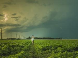 แคนาดาชงปรับแผนการจัดการความเสี่ยงด้านเกษตรกรรม