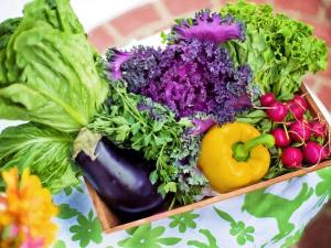 รัฐบาลเดนมาร์กสนับสนุนการผลิตอาหารจากพืช