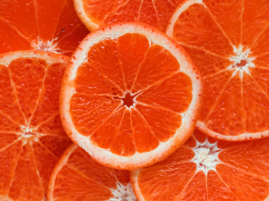 ผลผลิตตระกูลส้มอาร์เจนตินาตอบโจทย์ความต้องการ EU