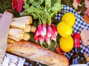 ซาอุดีอาระเบีย ประกาศร่างกฎระเบียบอาหาร Novel food