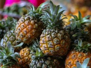 จีนยุติการนำเข้าสับปะรดจากไต้หวัน