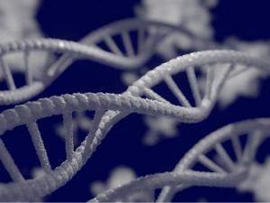EU แง้มความหวังยอมรับเทคนิคตัดต่อยีนสมัยใหม่
