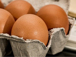 EFSA พบสารฟิโพรนิลในไข่!
