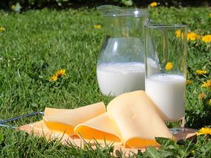 ผู้ผลิตนมมะกันจี้รัฐเว้นสินค้าชีสจากรายการลดโซเดีย...