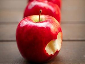 ชาวสวนออสซี่ผวาแอปเปิ้ลมะกันนำโรคแมลงเข้าประเทศ