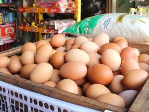 ไต้หวัน สั่งเรียกคืนไข่ หลังพบ Dioxin ปนเปื้อน