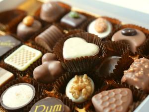 FTA แคนาดา-อียู โอกาสสดใสอุตฯช็อคโกแลต