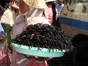 EU เตรียมปรับกฎหมายอนุญาตให้ใช้แมลงเป็นอาหารสัตว์
