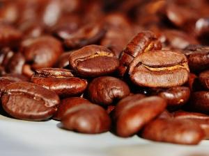 โครงการพัฒนาคุณภาพกาแฟเวียดนามสัมฤทธิ์ผล