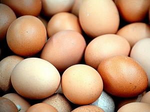 ไข่เกาหลีใต้ราคาลดลง หลังฝ่าวิกฤติไข้หวัดนก และไข่...